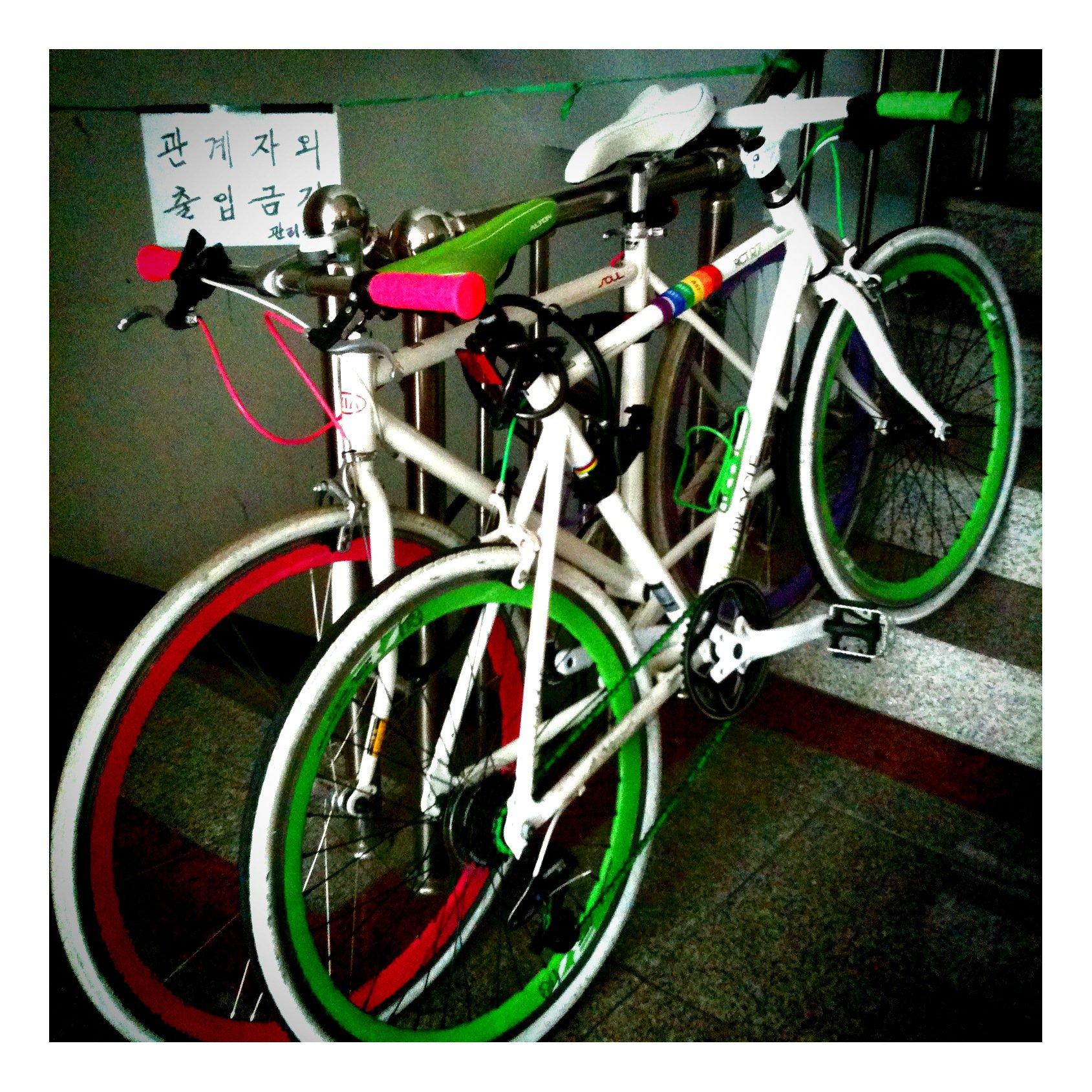 이알피어학원  자전거 수강생