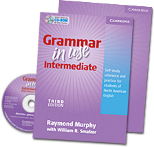 Grammar in use for Students of North American English